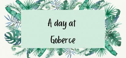 A day at Goberce
